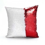 pillow_template_all_in_1red8